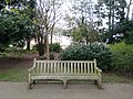Long shot of the bench (OpenBenches 5571-1).jpg