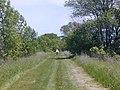 Luce Line Bike-Walk Trail, Cosmos to Cedar Mills, MN - panoramio (1).jpg