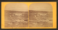 Ludlow, Vt., from the west, by Styles, A. F. (Adin French), 1832-1910.png