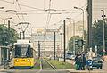 M5 Straßenbahn at Karl-Liebknecht-Straße - Spandauer Straße Berlin Deutschland (18560948262).jpg