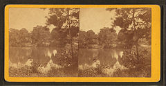 Magnolia Cemetery. (Lake), by Quinby & Co..jpg