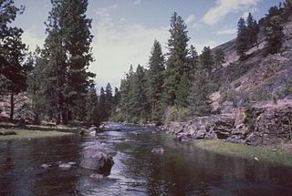 Malheur River river in the United States of America