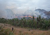 Burning Malagasy rainforest
