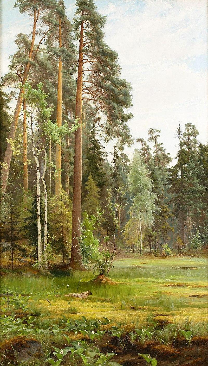 Mauritz Lindström- Skogslandskap med glanta.jpg