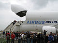 Meeting aérien d'Albert-Picardie (7 juin 2008) 013 (Beluga nez ouvert) - file d'attente.jpg