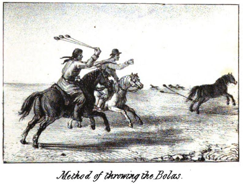 File:Method of throwing the Bolas.jpg
