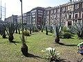 Mexico City (2018) - 214.jpg