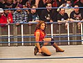 Mickie James at TNA Impact Wrestling TV taping 2012.jpg