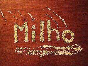 Corn Português do Brasil: Milho