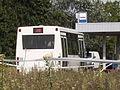 Miniautobus Jelcz.JPG