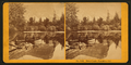 Mirror Lake, Yosemite, Cal, by Kilburn Brothers.png