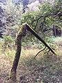 Mittelfranken (29617550293).jpg