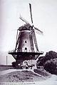 Molen De Korenbloem, Kortgene omstreeks 1940.jpg