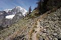 Mont Chetif - trail.jpg