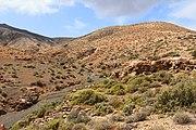 Montaña de Cardón 04.jpg