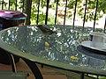 Monte Palace Tropical Garden, Funchal - 2012-10-26 (19).jpg