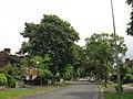 Morrell Avenue - geograph.org.uk - 1416537.jpg