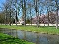 Moschee während Kirschbaumblüte.JPG