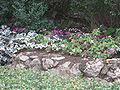 Mount Herzl Military Cemetery IMG 1359.JPG
