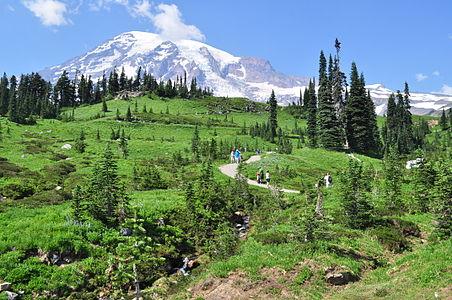 Mount Rainier - Paradise - Dead Horse Creek Trail - August 2014 - 01.jpg