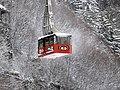 Mount Roberts Tramway 5750.jpg