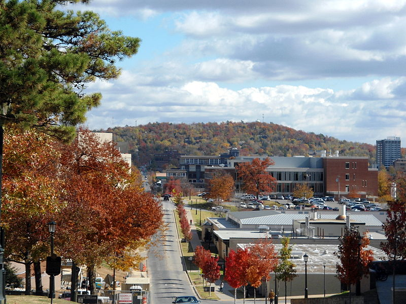 Fayetteville Ar City Council Mills Property Tax Rate