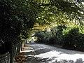 Moyallon Road near Gilford - geograph.org.uk - 1564318.jpg