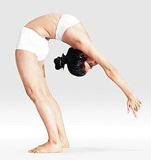 220px Mr yoga sun salutation 2 yoga asanas Liste des exercices et position à pratiquer