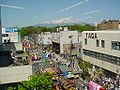 Mt Chokai and Sakata festival.JPG