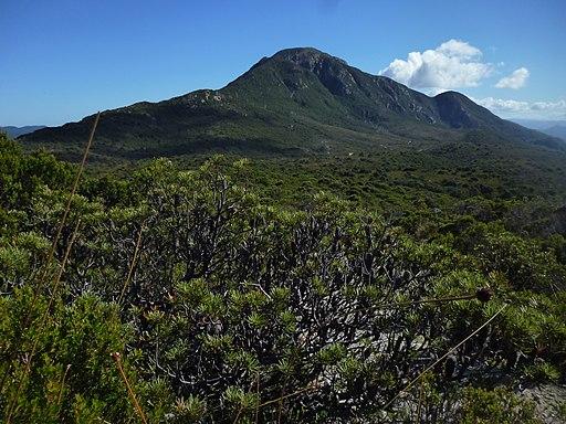 Mt Darwin