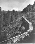Mt Rainier and wooden flume for Electron hydroelectric power plant of Puget Sound Power Co Puyallup River (CURTIS 753).jpeg