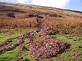 Mud slide - geograph.org.uk - 1016957.jpg