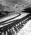 Muldrow Glacier, medial moraine of valley glacier, August 13, 1961 (GLACIERS 5179).jpg