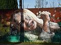 Muro en Villarrica2 - Flickr - rgamper.jpg