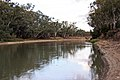 Murrumbidgee River at Hay NSW 1.jpg
