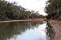 Murrumbidgee River at Hay NSW 1.jpg