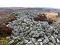 Mutiny Stones - geograph.org.uk - 375793.jpg