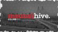 Mzansi Hive Magazine.png