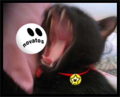 uska gotska maca crni veliki kurac xvideo