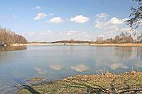 NPR Bohdanečský rybník1.jpg