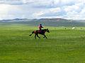 Naadam rider 2.jpg