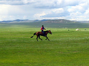 Steppe - Steppe in Mongolia