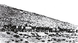 Namaqualand Railway - Namaqualand Railway mule train, c. 1876.