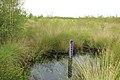 Nationaal park De Groote Peel 24.jpg