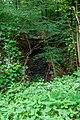 Naturbëschreservat «Beetebuerger Bësch»-105.jpg