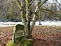Naturdenkmal, Kaiserstand-Gedenkstein, nach 1893, aus Sandstein, Kaiserstand , 8. Nov. 1893 , Der Weg vom Stellenhäuslein bis hierher wurde gebaut 1901 bis 1907 , , Von hier aus erlegte Kaiser Wilhelm II 2. Hirsche, ges - panoramio.jpg