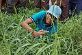 Nature Study - Summer Camp - Nisana Foundation - Bengal Engineering and Science University - Sibpur - Howrah 2013-06-08 9514.JPG