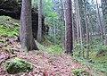Nature reserve Pavlinino udoli (004).jpg