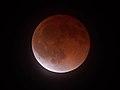 Near Total Eclipse 20140415.jpg