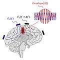 Non-invasive Deep Brain Stimulation (Mechanism).jpg